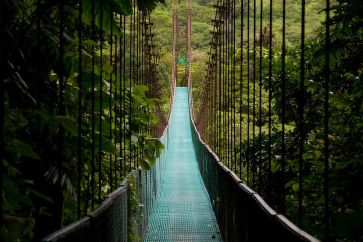Costa Rica Bridge in the Jungle